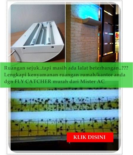 Jual insect fly catcher perangkap serangga lalat murah